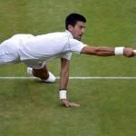 Djokovic, Ferrer, Berdych, Del Potro, Haas qualifiés