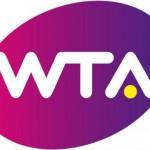 Masters de Londres: Nadal et Berdych qualifiés