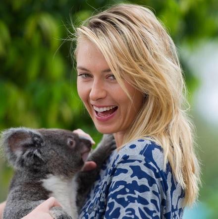 Maria Sharapova avec un koala, Brisbane 2015