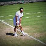 Jo-Wilfried Tsonga: «Le jeu va bien»