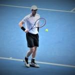 Open d'Australie : Andy Murray déclare forfait