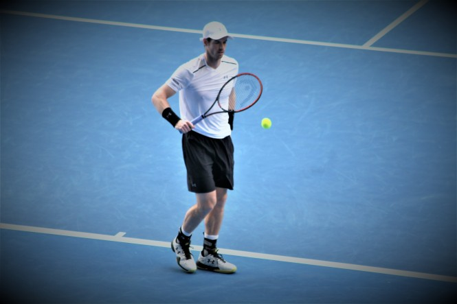 Andy Murray / ©SoTennis