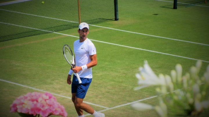Novak Djokovic:«Remporter Wimbledon, c'est un rêve de gosse et une immense motivation »